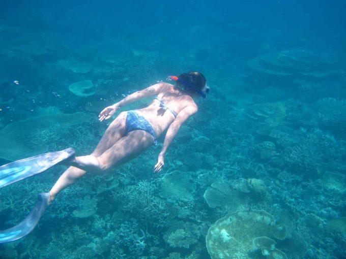 maldives-islands-prontotourNIYAMA_CoralGarden_2015  (71)