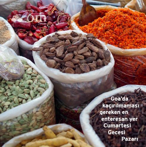 hindistan-goa-yoga-tatili-yoga-journal-turkiye-cizenbayan