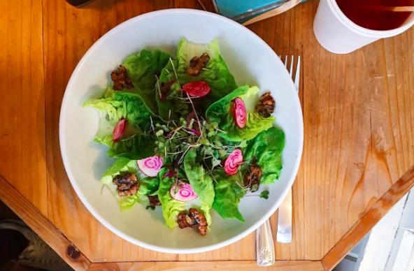 cizenbayan-jus-salata