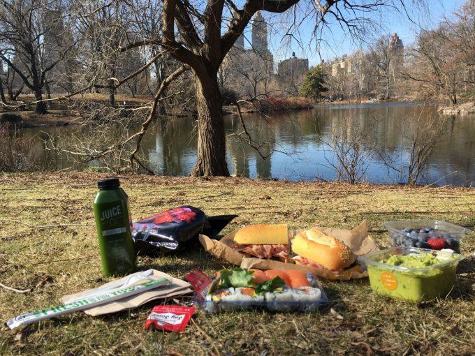 central-park-picnic