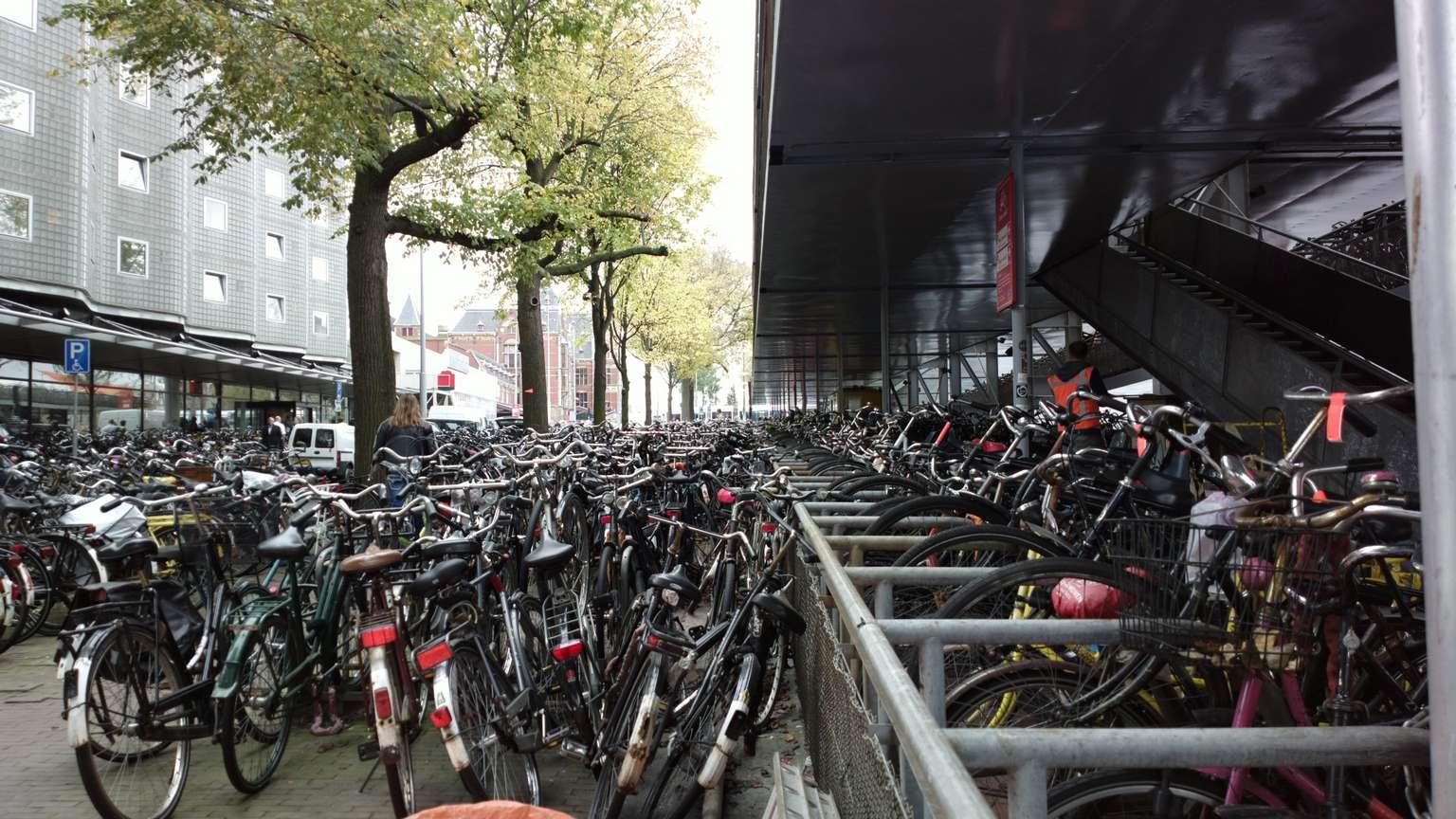 Ürünler Siyah Bir: bisiklet. Sahiplerin genel bakış, özellikler ve yorumlar